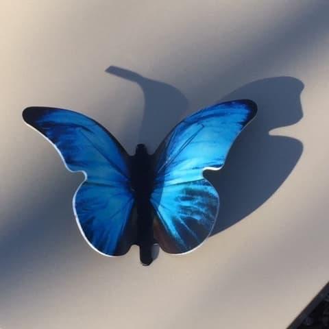 Vlinder met uv print op graf solid surface