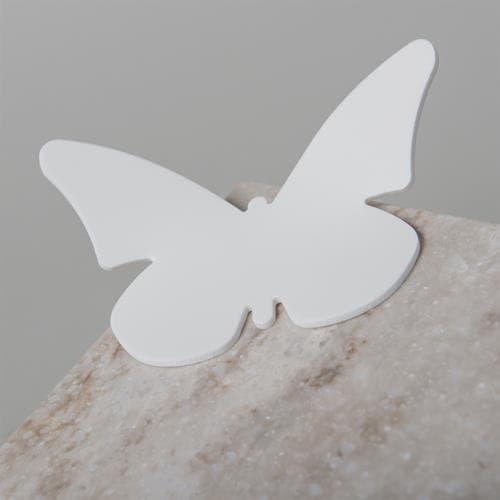 Witte vlinder van solid surface